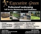 executive green landscaping buford GA